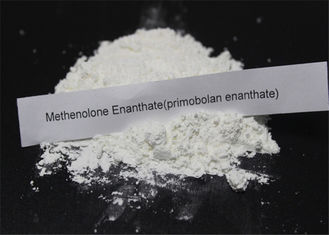 Pulver Methenolone Enanthate